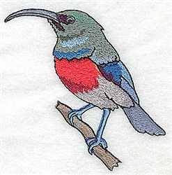 Long Bill Bird embroidery design