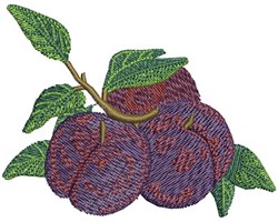 BATCH OF PLUMS embroidery design