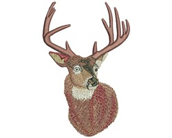 WHITETAIL PORTRAIT embroidery design