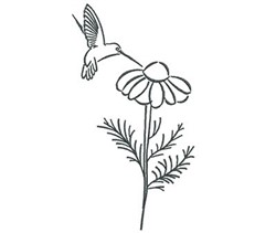 Hummingbird Daisy Outline embroidery design