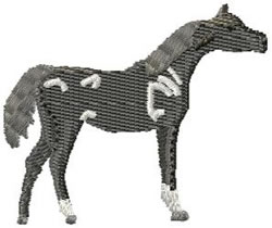 Arabian Horse embroidery design