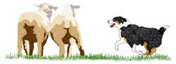 Australian Sheep Dog embroidery design