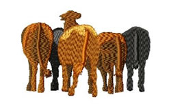 Herd of Cattle embroidery design