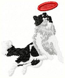 Frisbee Dog - Border Collie embroidery design