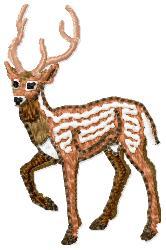 Gazelle embroidery design