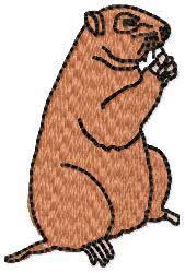 Groundhog embroidery design