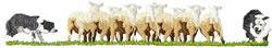 Sheep Herding 3 embroidery design