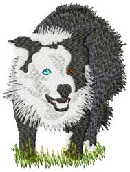 Border Collie- large embroidery design