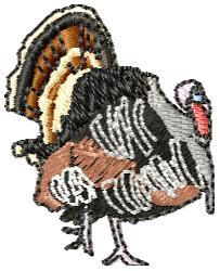 Strutting Turkey embroidery design