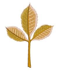 Fall Birch Leaf embroidery design