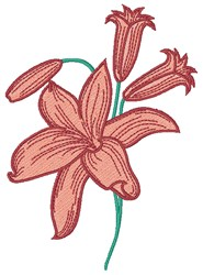 Orange Lily embroidery design