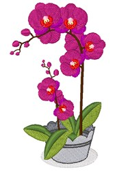 Orchid Flower embroidery design