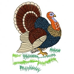 Colorful Turkey embroidery design