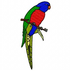 Lorikeet embroidery design
