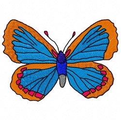 Butterfly Drawing embroidery design