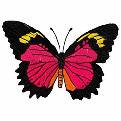 Malay Lacewing embroidery design