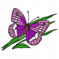 Purple Putterfly embroidery design