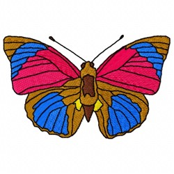 Claudina Butterfly embroidery design