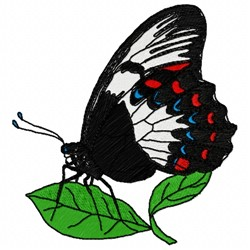 Papilionidae Butterfly embroidery design
