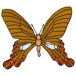 Brown Butterfly embroidery design