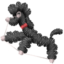 Poodle Sketch embroidery design