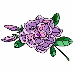 Purple Rose embroidery design