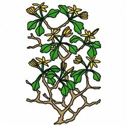 Corokia embroidery design