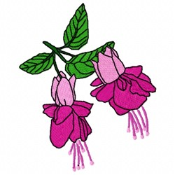 Fuchsia Flower embroidery design