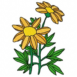 Gamolepis Flower embroidery design
