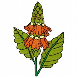 Crossandra Flower embroidery design