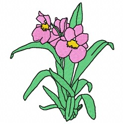 Pansy Orchid embroidery design
