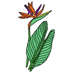 Strelitzia Flower embroidery design