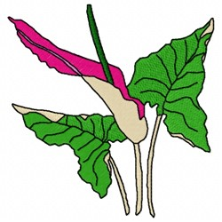 Araceae Flower embroidery design