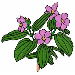 Tibouchina Flower embroidery design