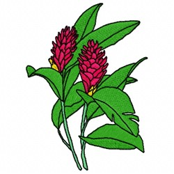 Alpinia Coccinea embroidery design