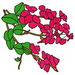 Chorizema Flower embroidery design