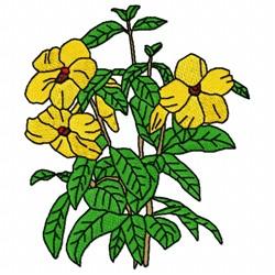 Allamanda Flower embroidery design