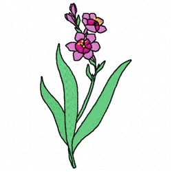 Babania Flower embroidery design