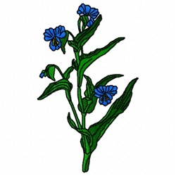Dayflower Plant embroidery design