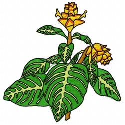 Zebra Plant embroidery design