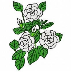 Cape Jasmine embroidery design