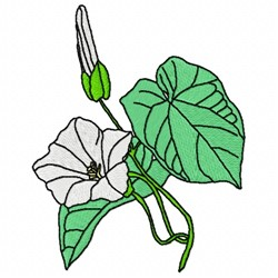 Bindweed Flower embroidery design