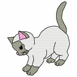 Playful Kitty embroidery design