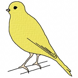 Canary embroidery design