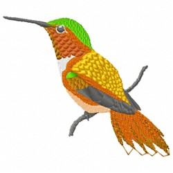 Hummingbird on Branch embroidery design