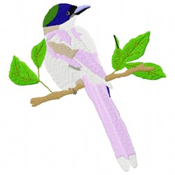 Azure Winged Magpie embroidery design