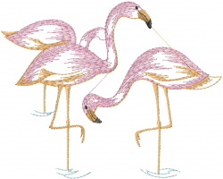 Flamingo Birds embroidery design