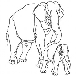 Elephant Family embroidery design