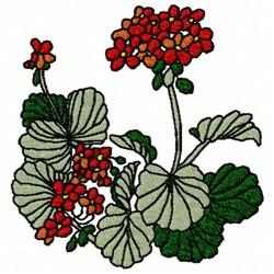 Geranium Plant embroidery design
