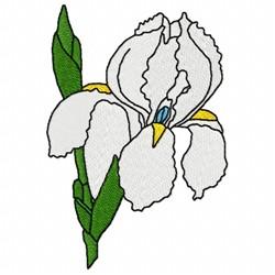 White Iris Flower embroidery design